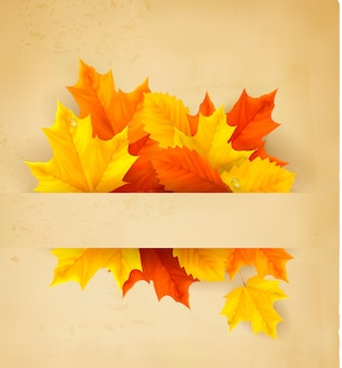 Kleurrijke herfstbladeren op een oud papier terug naar school achtergrond