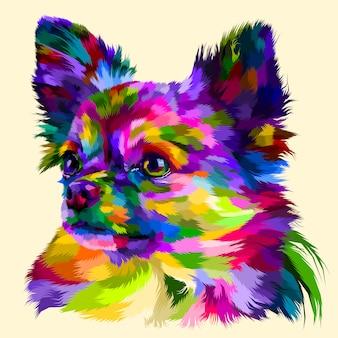 Kleurrijke hoofdchihuahua
