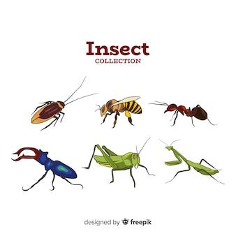Kleurrijke insectencollectie Premium Vector
