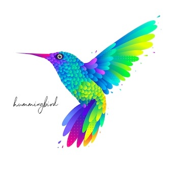 Kleurrijke kolibrie