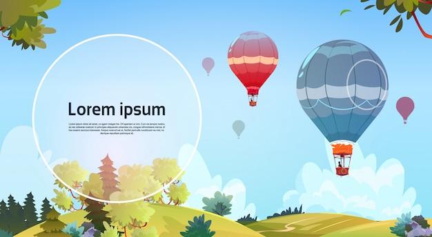 Kleurrijke luchtballons die in hemel over de zomerlandschap vliegen