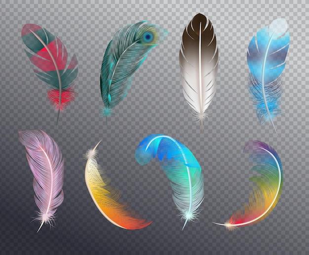 Kleurrijke realistische reeks vogelveren die in verschillende patronenillustratie worden geschilderd