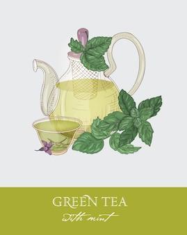 Kleurrijke tekening van glazen theepot met zeef, kopje groene thee, biologische muntblaadjes en bloemen op grijs.
