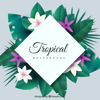 Kleurrijke tropische achtergrond met realistisch ontwerp