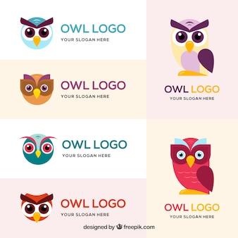 Kleurrijke uil logo set