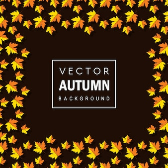 Kleurrijke vector autum bladeren achtergrond