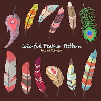 Kleurrijke veer patroon