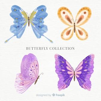 Kleurrijke vlindersinzameling
