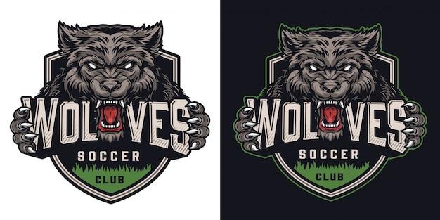 Kleurrijke voetbalclub logo