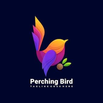 Kleurrijke vogel logo illustratie vector sjabloon