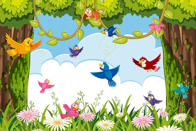 Kleurrijke vogels in jungle scene