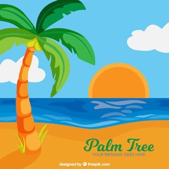 Kleurrijke zonsondergang met palmachtergrond