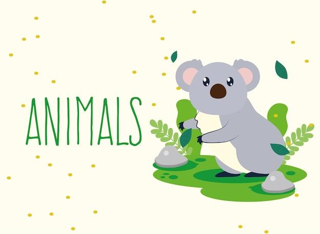 Koala en dieren tekstposter