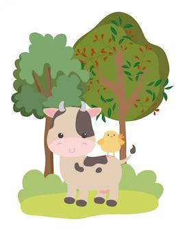 Koe en kip cartoon
