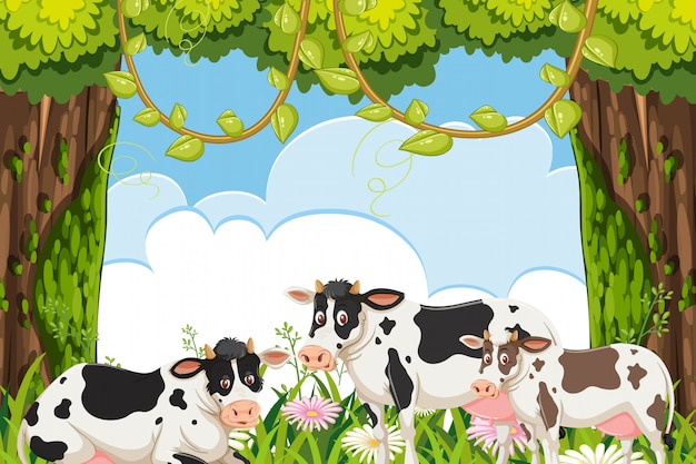 Koeien in bosscène