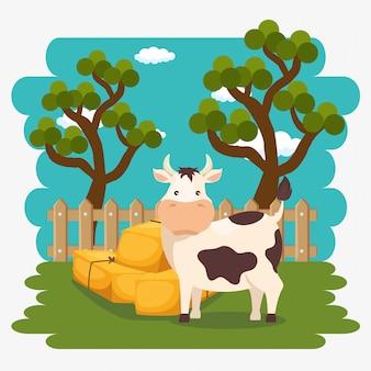 Koeien in de boerderij scène