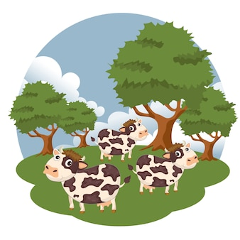 Koeien in de boerderij