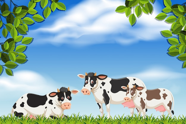 Koeien in natuurscène