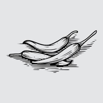 Koel in grafische stijl hand-drawn illustratie