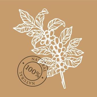 Koffie branch design hand getrokken schets illustratie