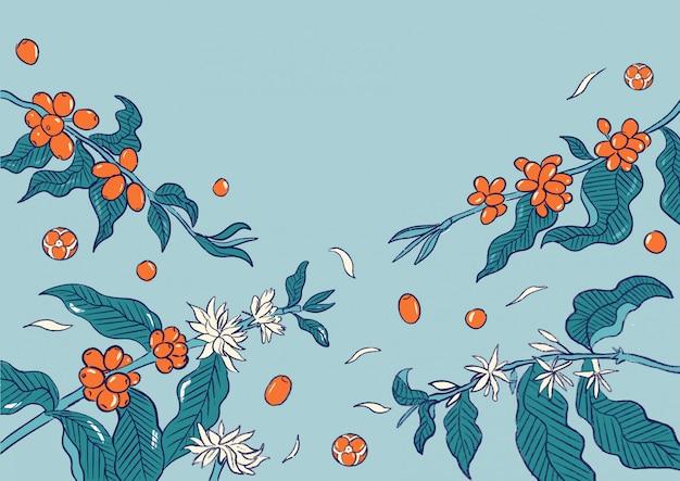 Koffie kersen plant patroon illustratie