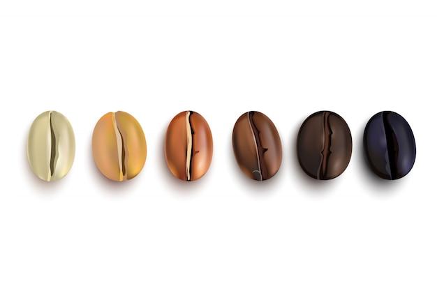 Koffiebonen roaststadia