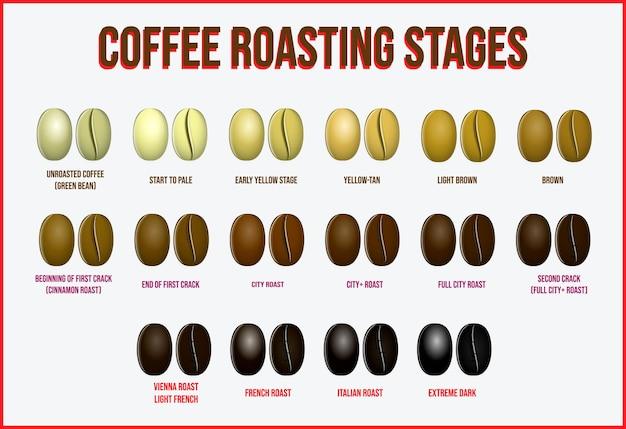 Koffiegidsillustratie in cartoonstijl of hoe koffie te zetten, hete smakelijke drank of instructie
