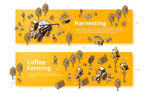 Koffieteelt en oogsten isometrische banners, boeren die werken aan veldverzorging van planten en het verzamelen van gewassen. mensen gebruiken maaidorser- en tractormachines voor werk, 3d-lijntekeningen, webvoettekst of koptekst