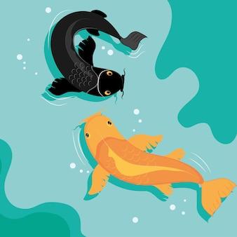 Koi karper vissen