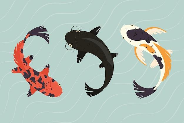 Koi vissen collectie op het water