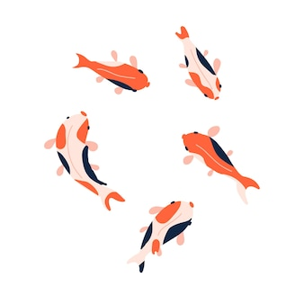 Koi vissen illustratie collectie bovenaanzicht