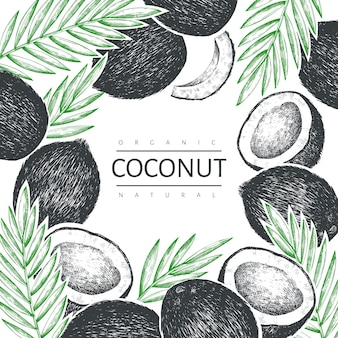Kokosnoot met palm bladeren ontwerpsjabloon. hand getekend vector voedsel illustratie. gegraveerde stijl exotische plant. retro botanische tropische achtergrond.