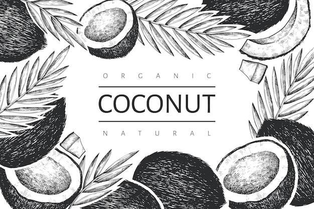 Kokosnoot met palm bladeren sjabloon. hand getekend voedsel illustratie. gegraveerde stijl exotische plant.
