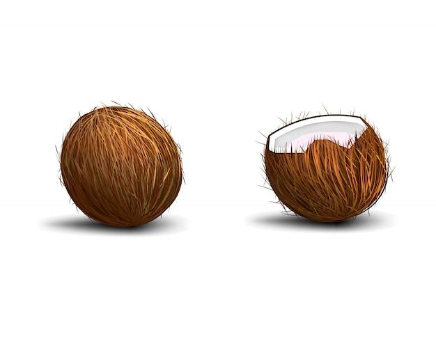 Kokosnoot op witte achtergrond met schaduw wordt geïsoleerd die