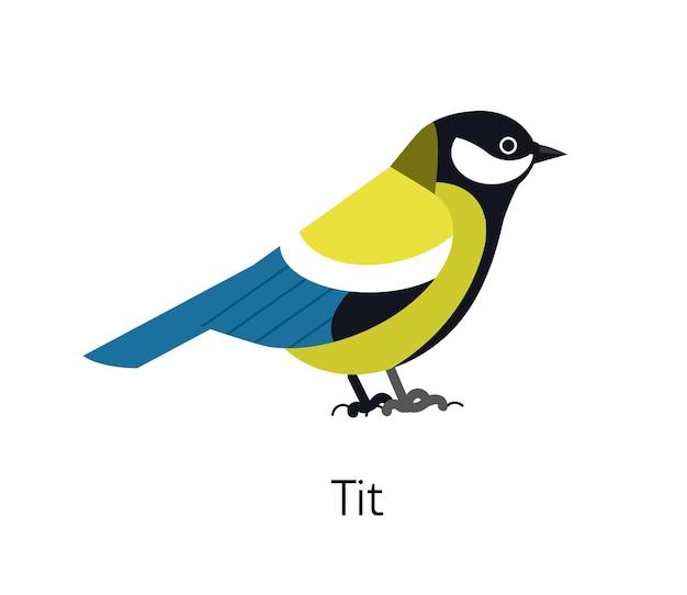 Koolmees geïsoleerd op een witte achtergrond. leuke grappige kleine insectenetende vogel. schitterende wilde vogelsoorten. lief klein vogeltje. moderne vectorillustratie in trendy platte geometrische stijl.