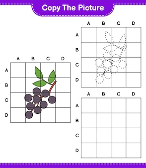 Kopieer de afbeelding, kopieer de afbeelding van vlierbes met behulp van rasterlijnen. educatief kinderspel, afdrukbaar werkblad