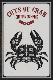 Krab vlees snijden cheme. krabsilhouet op grungeachtergrond. element voor poster, menu, flyer. illustratie