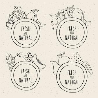 Krabbelreeks vruchten verse en natuurlijke etiketten