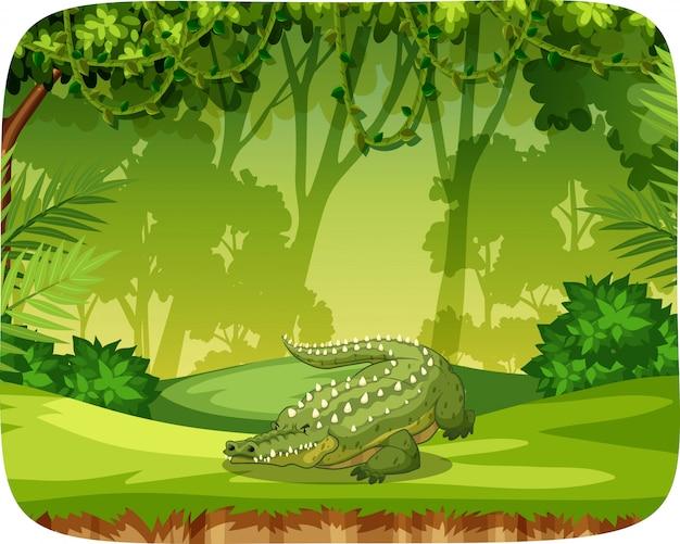 Krokodil op notitiesjabloon