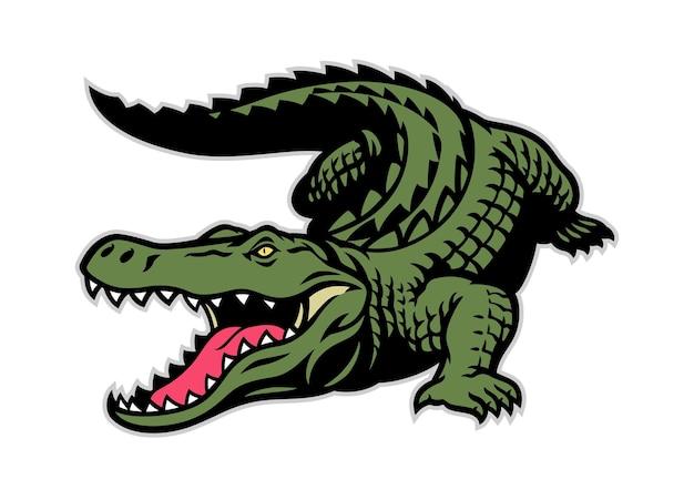 Krokodilmascotte in het hele lichaam