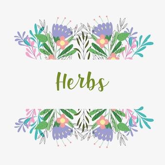 Kruiden bloemen kaart
