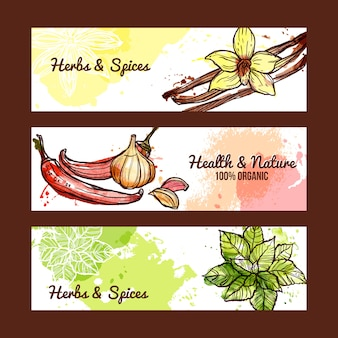 Kruiden en specerijen banners