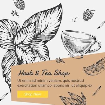 Kruiden en thee winkel biologische ingrediënten vector