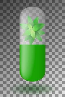 Kruidencapsule met muntblaadjes aan de binnenkant.