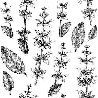 Kruidenpatroon met saliebladeren en bloemen.