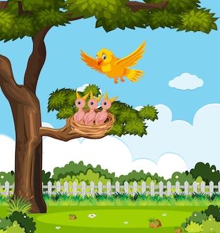 Kuikens en zijn moedervogel in aard