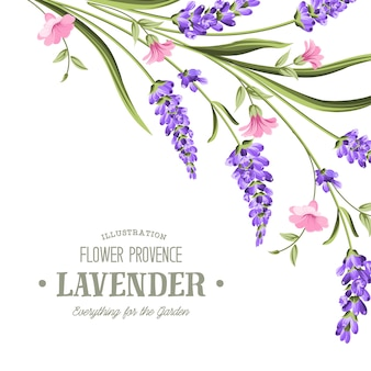 Label met lavendel.
