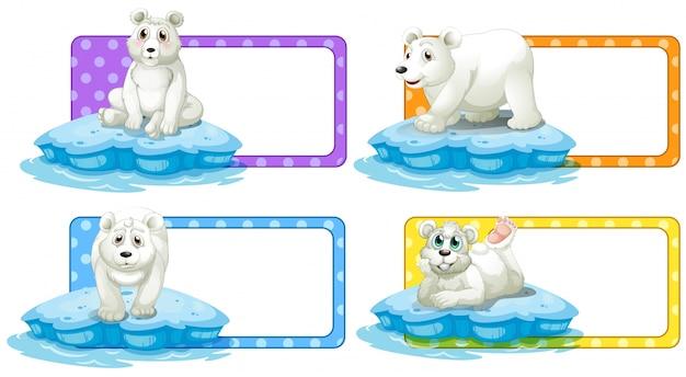 Label ontwerp met ijsbeer illustratie