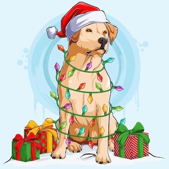 Labrador hond in kerstmuts zittend en omringd door kerstboomverlichting en geschenken aan zijn zijden