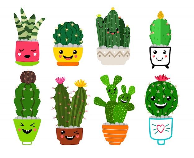 Lachende cactussen in potten